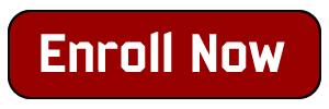 Alveol Academy Enroll Now